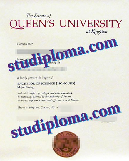 fake QUB degree certificate