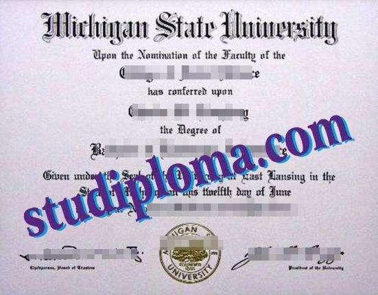 fake MSU diploma