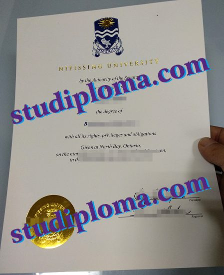 fake Nipissing University degree certificate
