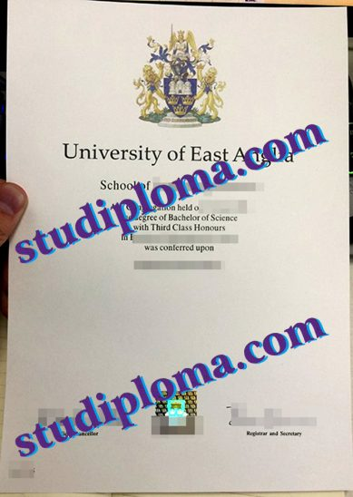 fake University of East Anglia diploma