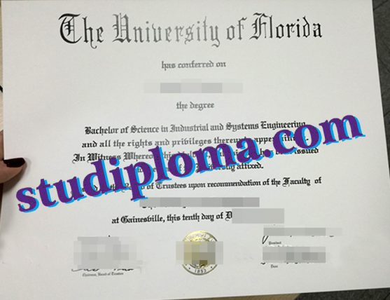 fake University of Florida diploma
