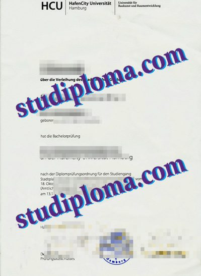 fake University of Hamburg diploma