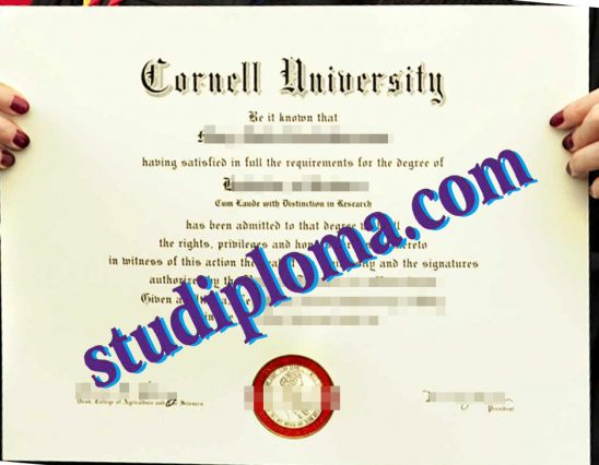 fake Curtin University of Technology diploma