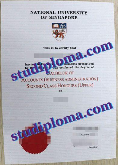 buy NUS diploma