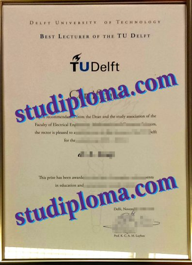 fake Delft University of Technology diploma