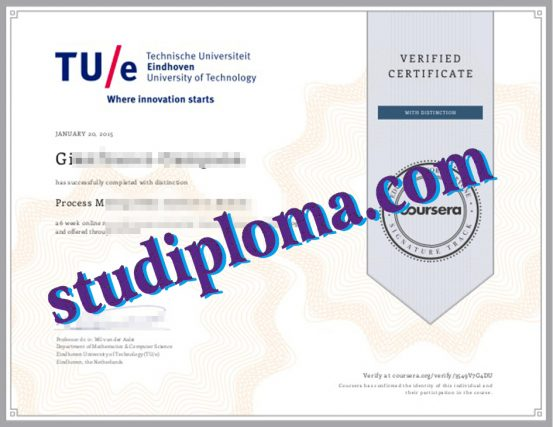 fake Eindhoven University of Technology diploma
