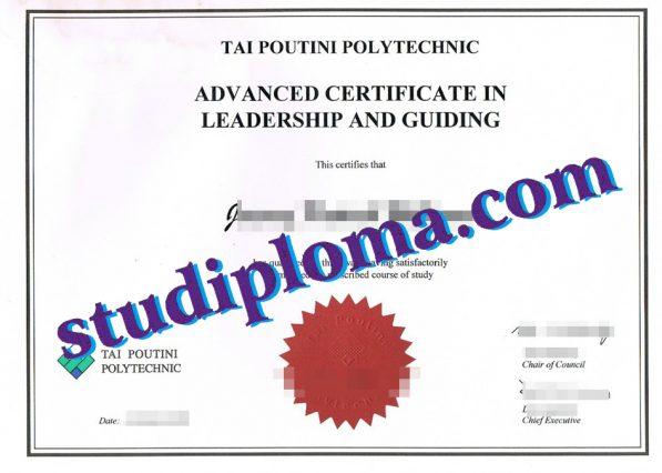 fake TPP diploma