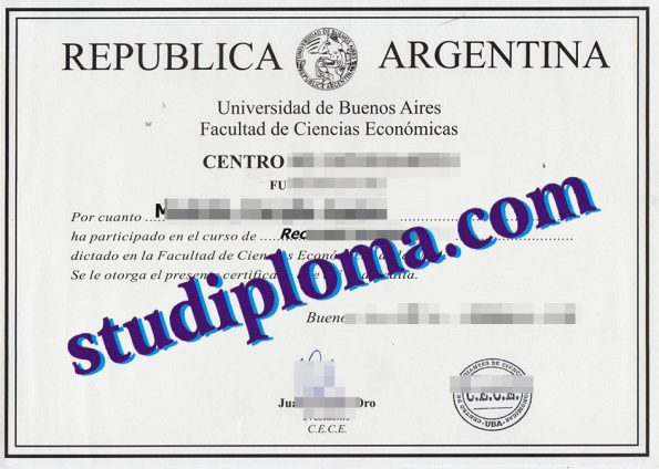 University of Buenos Aires degree