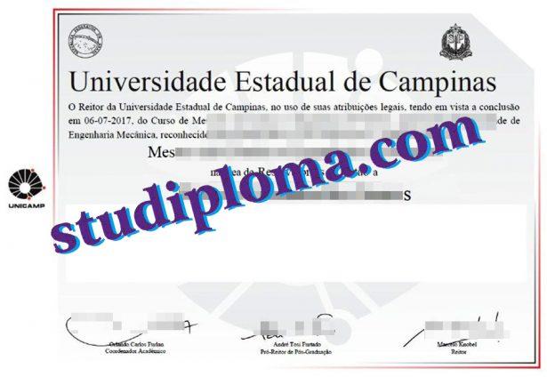 fake Universidade Estadual de Campinas degree