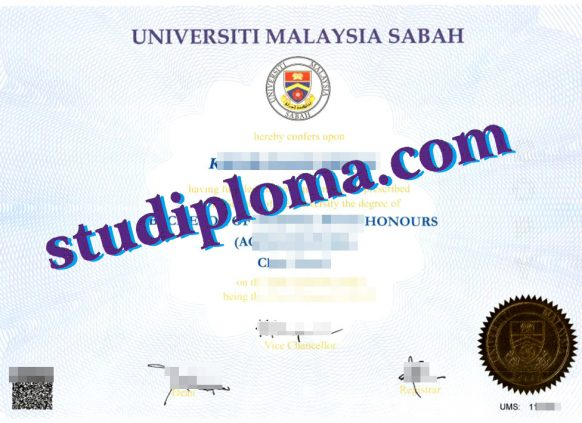 fake UMS degree certificate