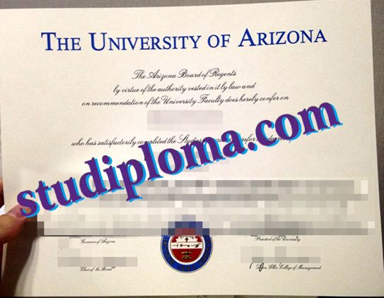 University of Arizona degree