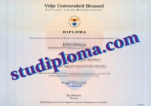 fake Vrije Universiteit Brussel degree certificate