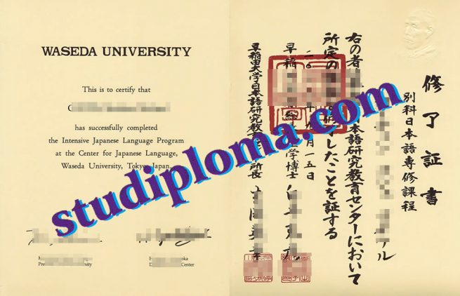 Waseda University degree certificate