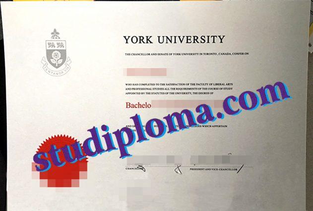 fake York University diploma